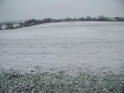 the winter field as it was