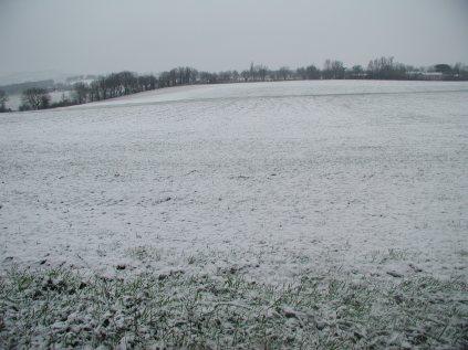 the winter field as it was