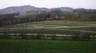 the contour lines adjacent field